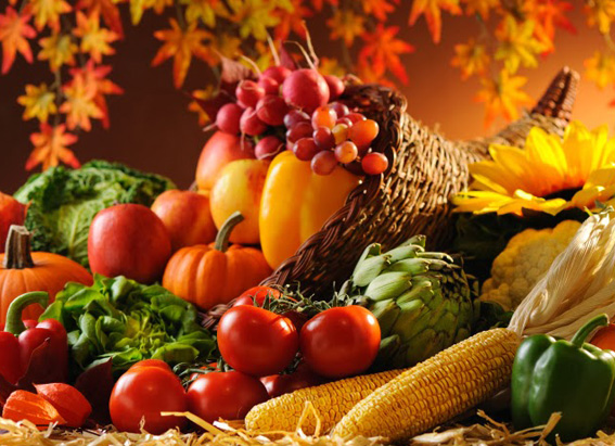 autumn produce for traverse city csa memberships and wine