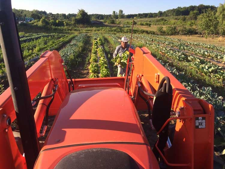 csa pictures and life on the farm in traverse city michigan