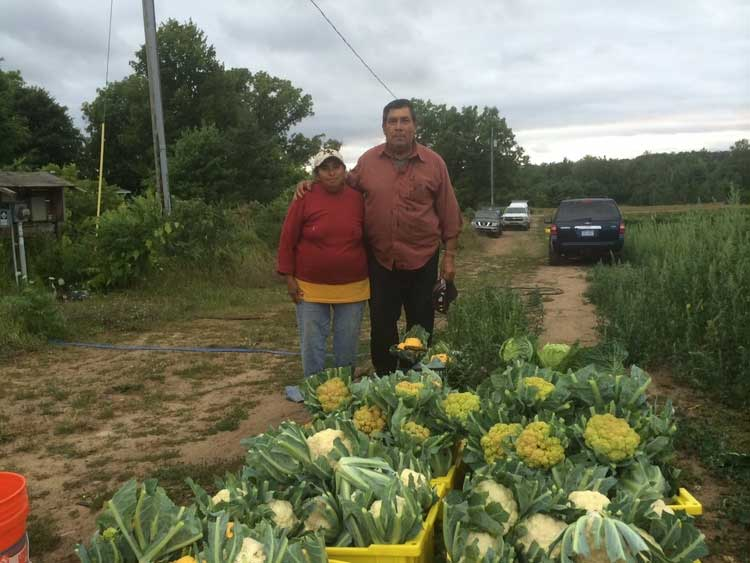 farmers markets in the old mission peninsula with nicholas farms